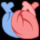 Cardiometabólicos